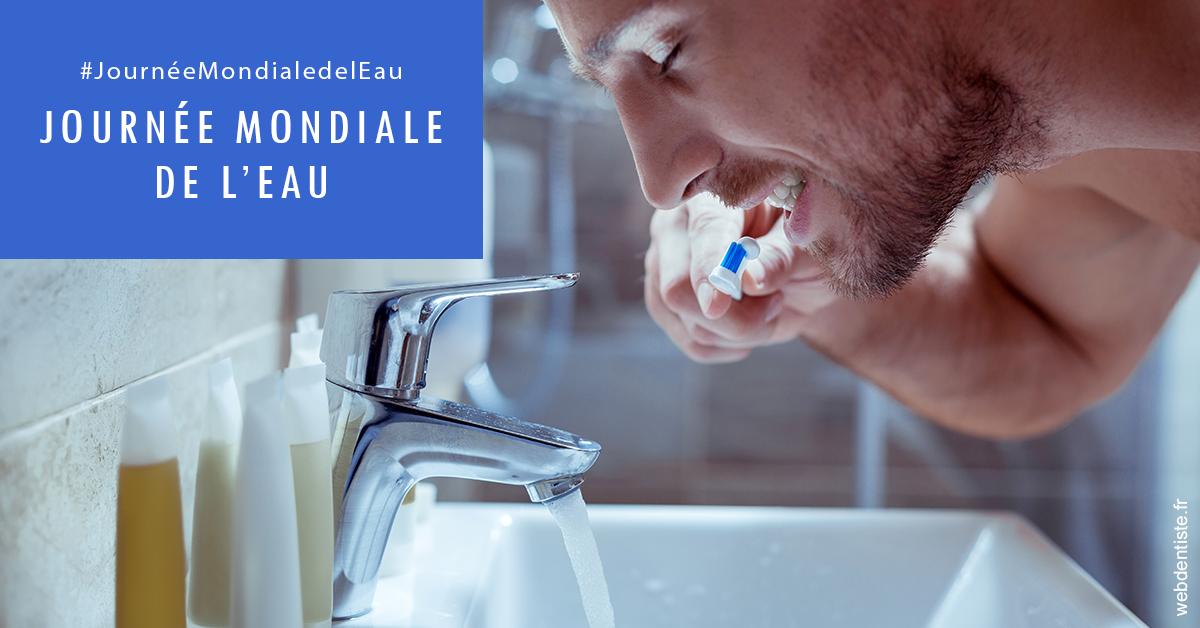 https://dr-monlouis-deva-michele-sandra.chirurgiens-dentistes.fr/Journée de l'eau 2