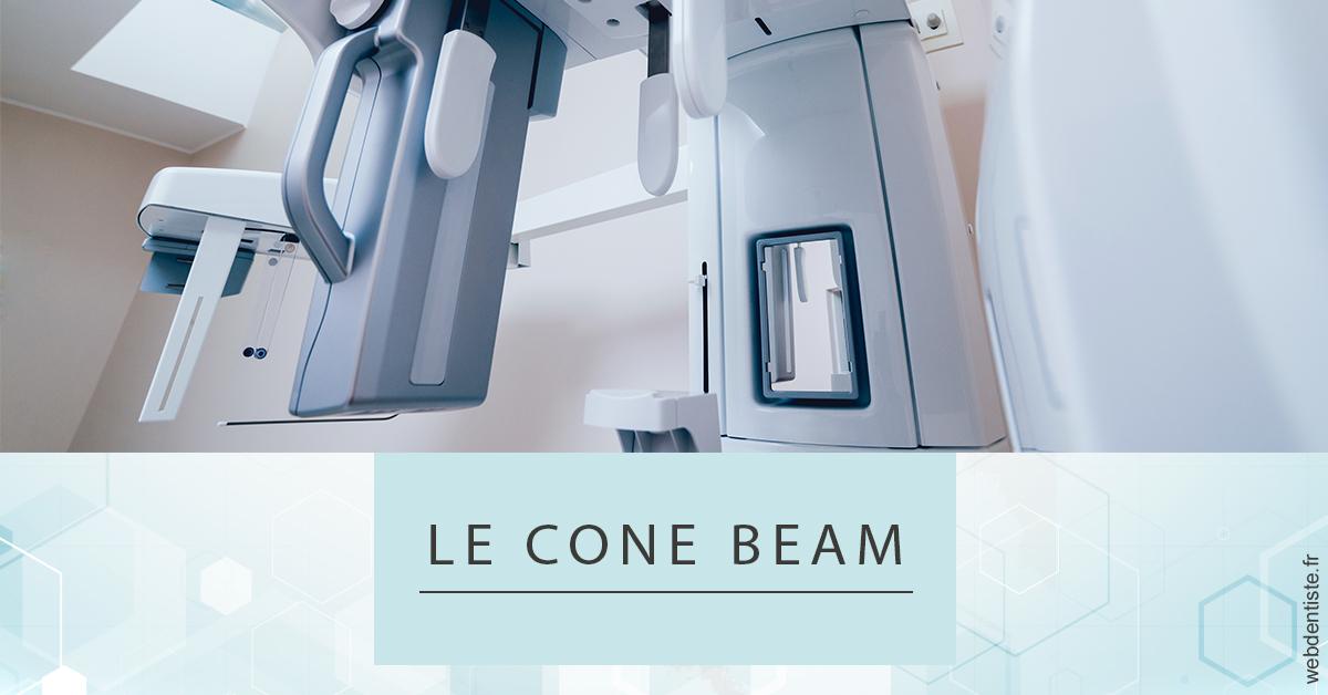 https://dr-monlouis-deva-michele-sandra.chirurgiens-dentistes.fr/Le Cone Beam 2