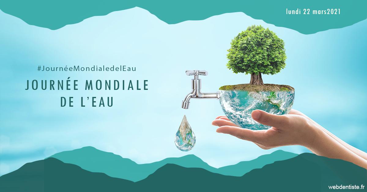 https://dr-monlouis-deva-michele-sandra.chirurgiens-dentistes.fr/Journée de l'eau 1